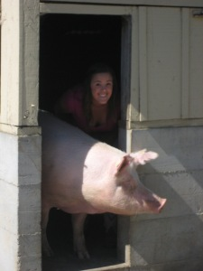 "Cassie with Her Favorite Sow, ""Big Mamma"""